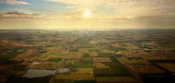 Food ERP solutions: Sometimes the grass IS greener on the other side