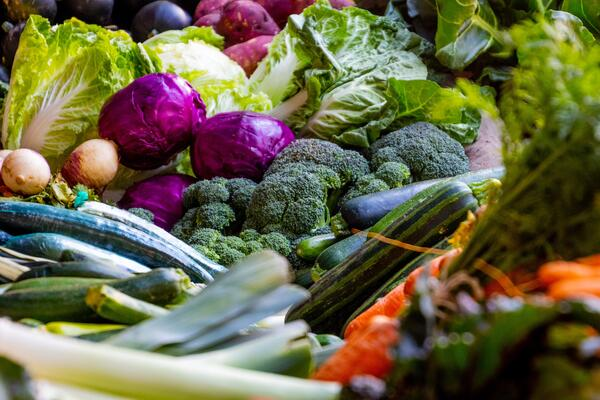 Waste not, want not: The true impact of food waste reduction