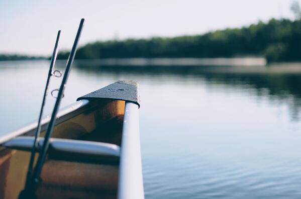 Våra bästa fisketips