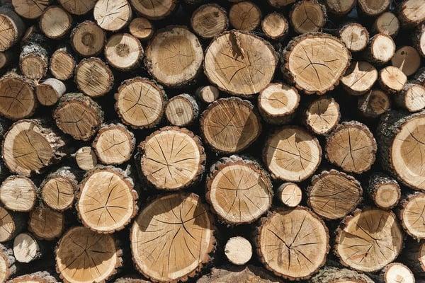 Fungerar Dynamics 365 i skogsindustrin?
