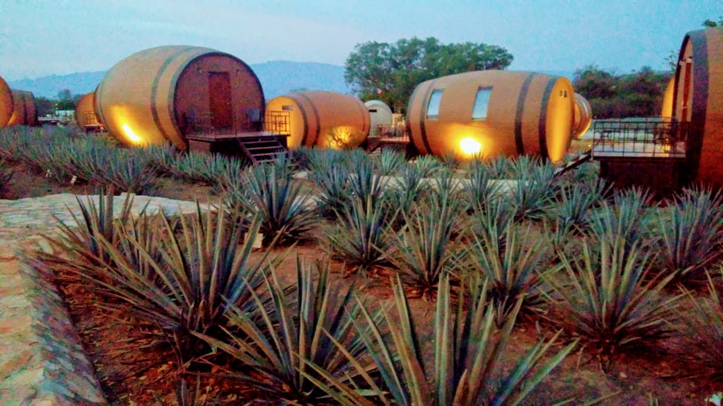 A Tequila para conocer del tequila - Featured Image