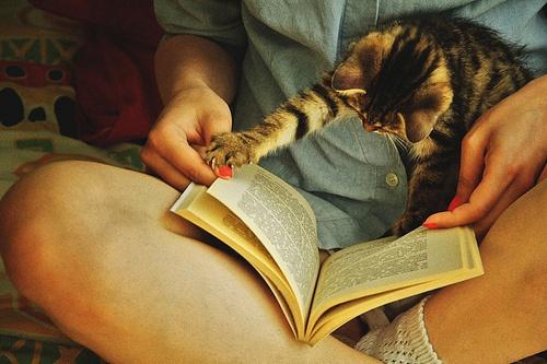 5 beneficios de la lectura que desconocías hasta ahora - Featured Image