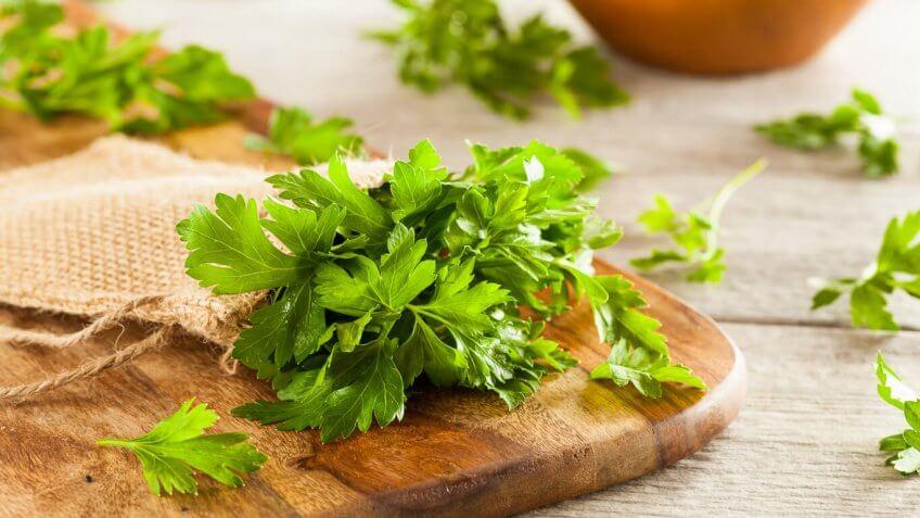 5 hierbas básicas en la gastronomía mexicana - Featured Image