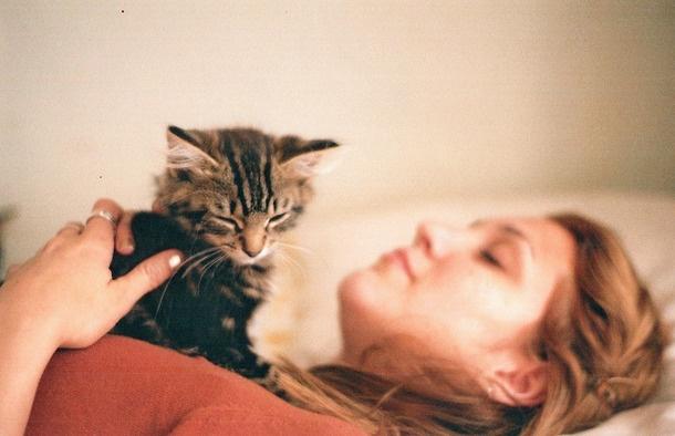 Terapia felina: Beneficios de tener un gato en casa - Featured Image