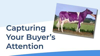 Capture Buyer Attention Thumb