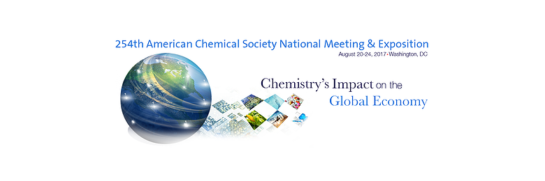 254th American Chemical Society National Meeting & Exposition Conference image