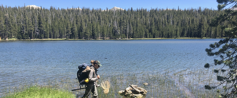 Yosemite field research with Biomeme-1