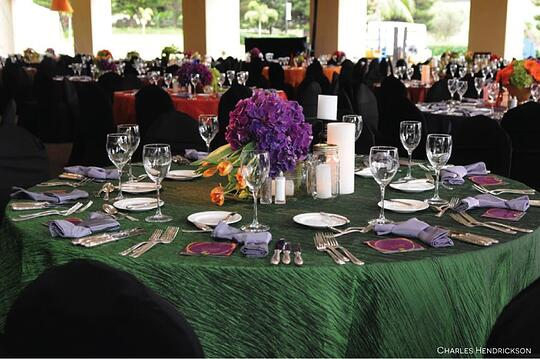 How to use color basic color theory for Table linen color combinations