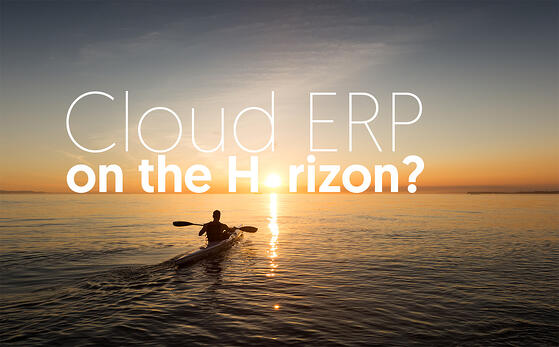 CloudERP-on-the-Horizon-Considerations