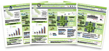 Lipp designed county profiles for California Student Mental Health Project