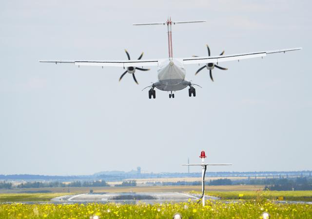 flight school training management