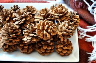 Pumpkin Spice Scented Pinecones