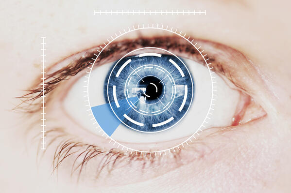 eye biometric face recognition ID