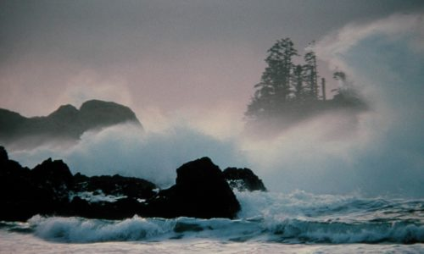 Winter Wonders on Canada's Wild West Coast