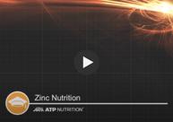 Zinc Nutrient Knowledge Title