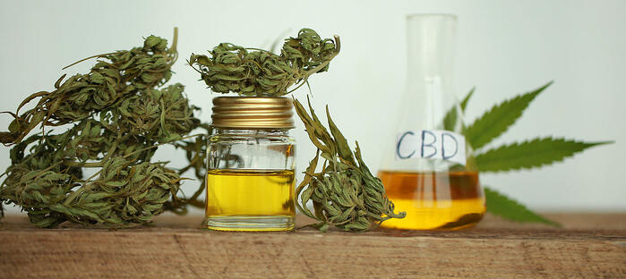 bigstock-Cannabis-Product-Oil-232479163