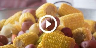 LCB-video-pic-1080x540