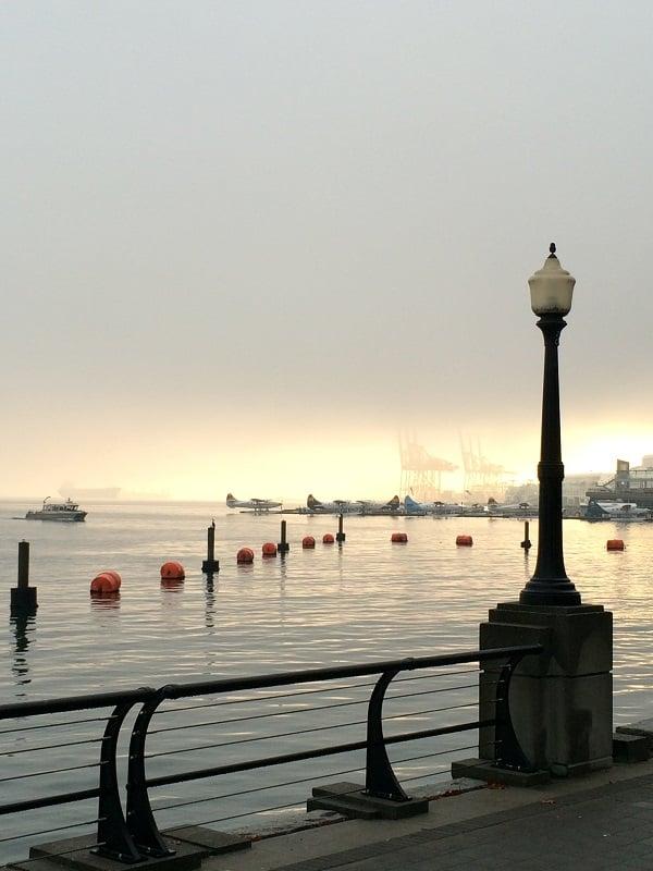 AM fog_sun_WEB