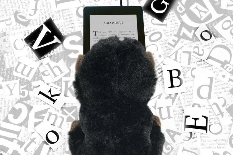 llibre-digital