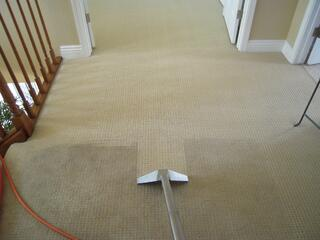 Before-and-After-Carpet-Cleaning.jpg
