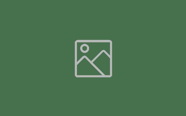 vdiwissensforumsensorsregulus-1024x384