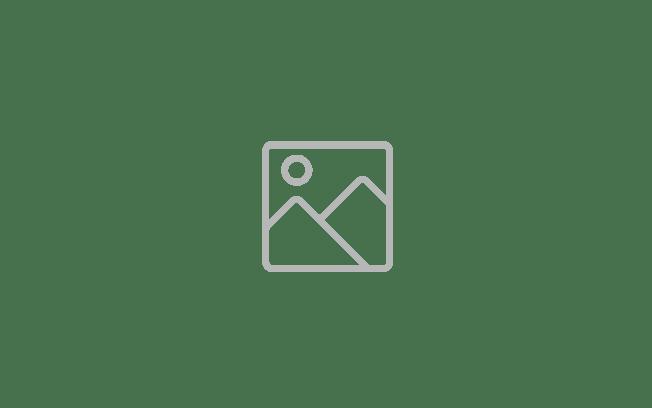 pka-Logo-Original-RGB