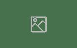 Varidi_Logo