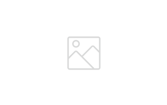 Logo Robert Walters