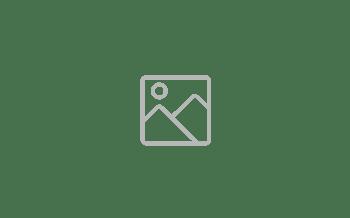 Mockups App (8)