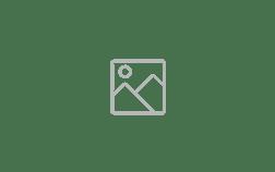 elgen_logo
