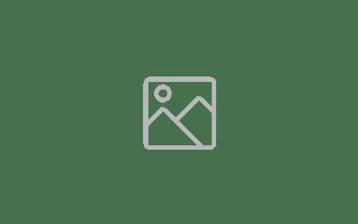 Logo Numblees
