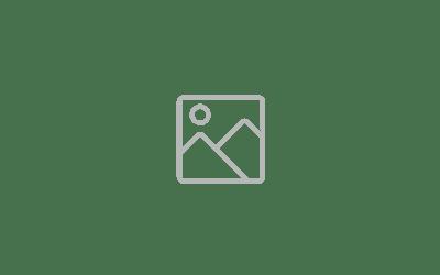 Webinar 2021 - Resource page