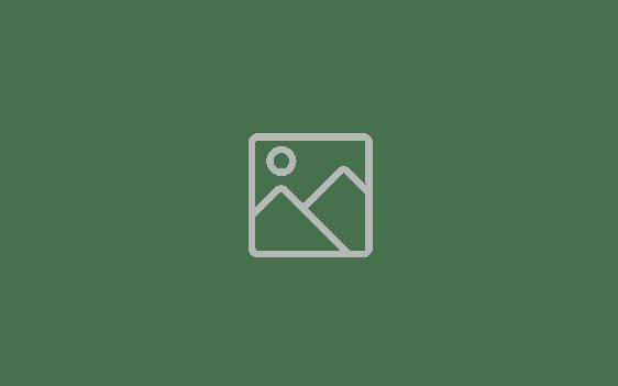 Gianrico-Delfino-web-300x267-removebg-preview