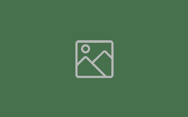 px logo black white-1