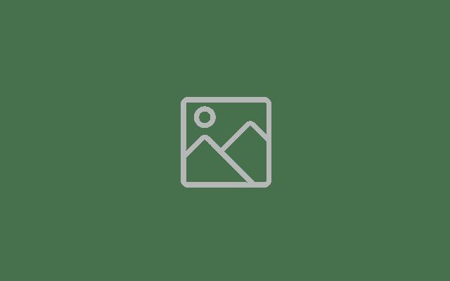 xatl-undraw-mindmap