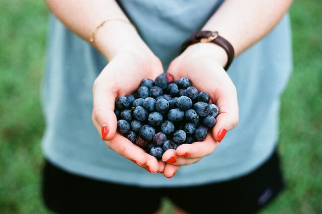 Foods to preload with to combat oxidative stress