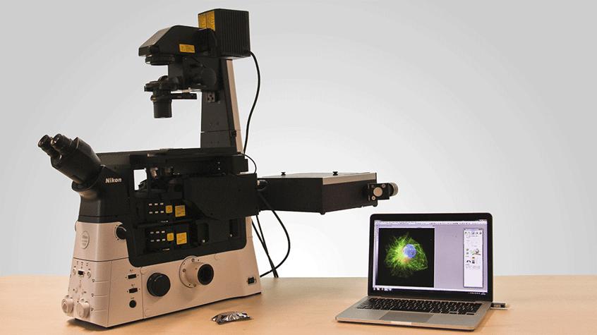 REFLECT réinvente l'imagerie pour la culture cellulaire 3D