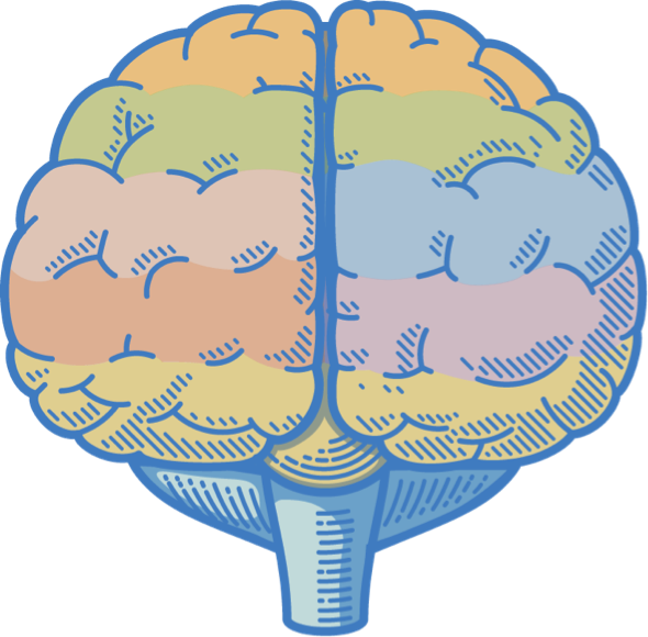 brain with text