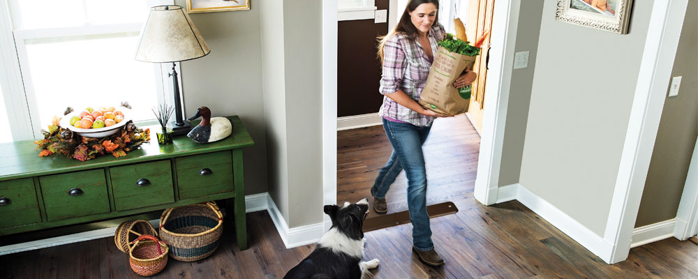 Has your pet become a door darter? Invisible Fence® Brand has created the perfect guide on how to keep your pet from escaping or running out the door.