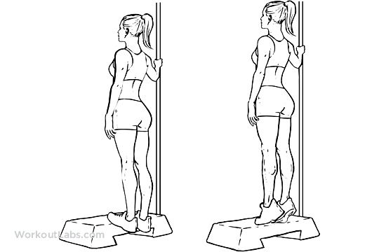 Bodyweight_Calf_Raises_F_WorkoutLabs.png