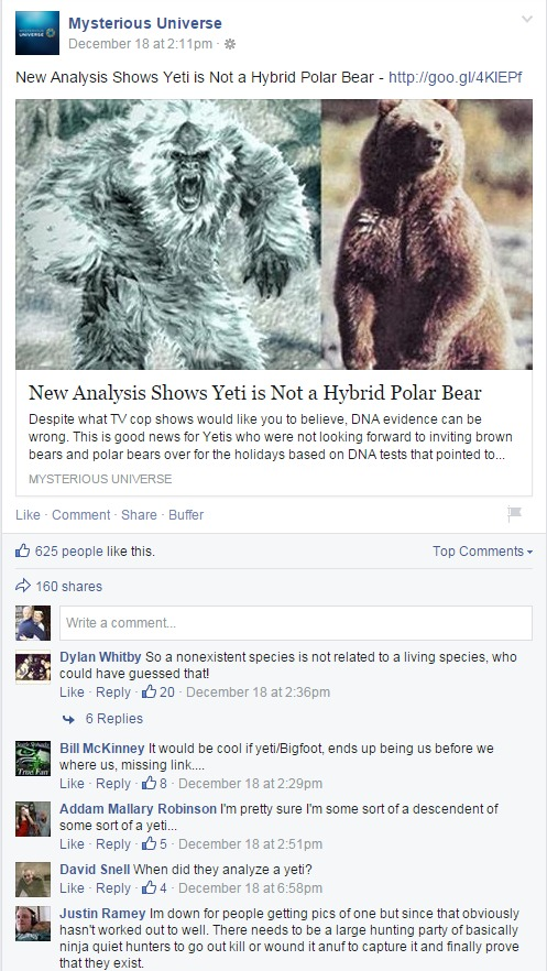 yeti bear analysis