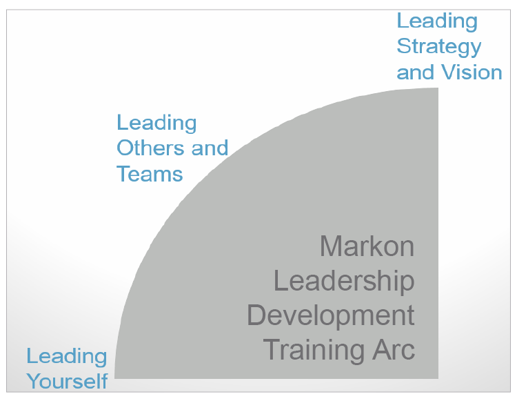 Leadership Development Program (LDP) Participants Lead Strategy