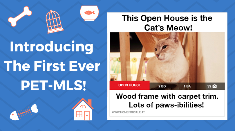 Introducing The First Ever Pet MLS!