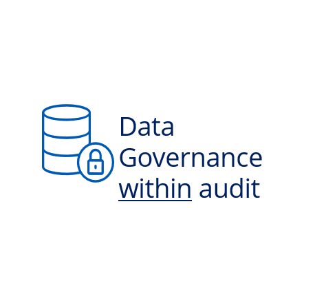 Do auditors need a specific data governance and management approach?