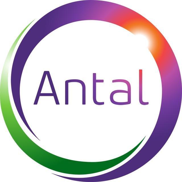Q&A: Antal International