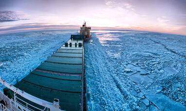 Polar incursions: a case for Active Risk Management