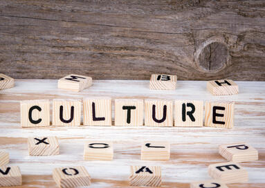 How to adapt and create culture