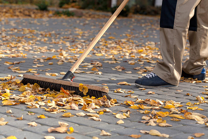 Get Your Silver Spring Yard Ready For Winter!