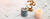 set-the-scene-for-meditation