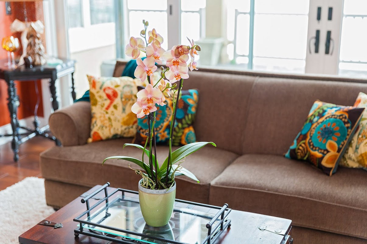 How to decorate home with flowers - 4 Simple Ways You Can Decorate Your Home Like A Professional